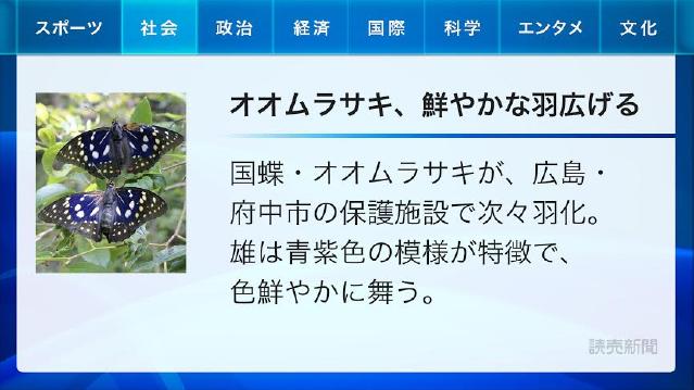写真付き 50文字ニュース